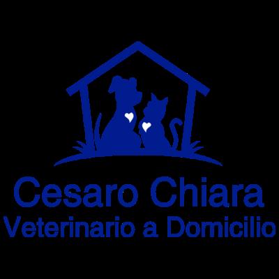 Cesaro Chiara Veterinario a Domicilio